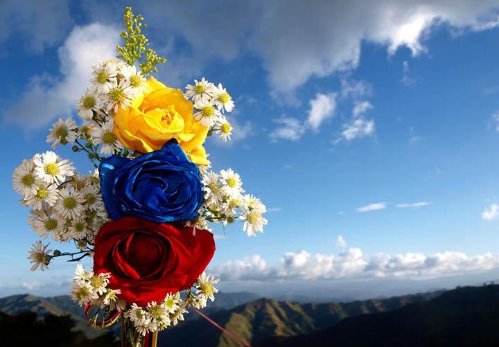 http://www.pensandoamericas.com/sites/default/files/blogs_imagenes/paz-colombia.jpg