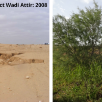 The Regenerative Proof of Project Wadi Attir