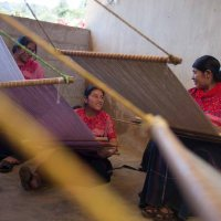 Horizontal Collaboration Uplifts Female Artisans in Southern Mexico