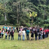 The Promising Model of Teaching In Nature