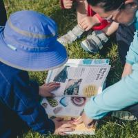 Pathfinders Implement Alternative Learning Program in Denver's Forests